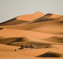 The amazing Moroccan Sahara! #Morocco #Travel
