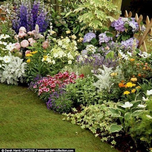 Die besten mehrjährigen Pflanzen für Cottage Gardens – Dagmar Kaiser