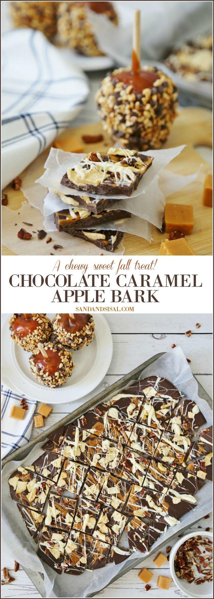Chocolate Caramel Apple Bark Recipe