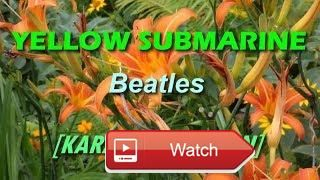 Yellow Submarine by Beatles KARAOKE  Karaoke Version in HD Quality with customized background Please subscribe like and share for more videos