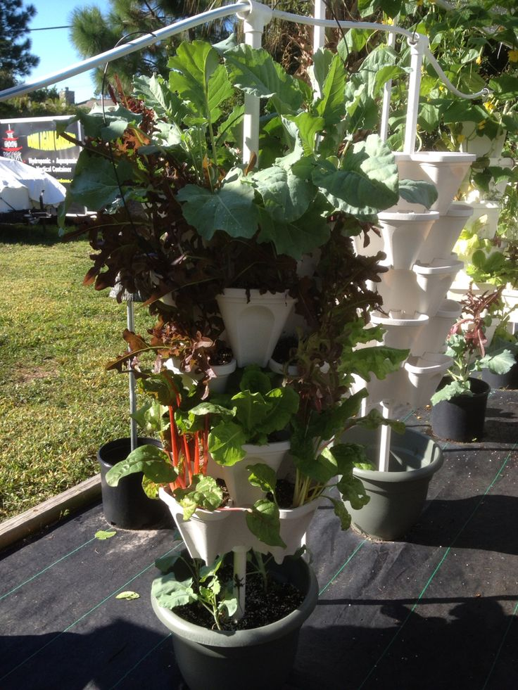 Mr Stacky Stackable Pots Use Soil Hydroton Vermiculte Perlite