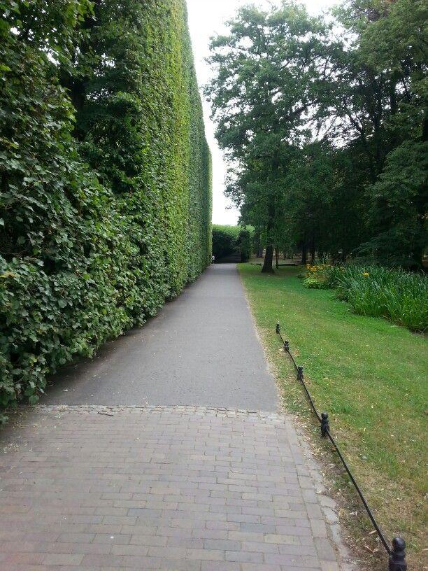 Gdańsk Oliwa Garden