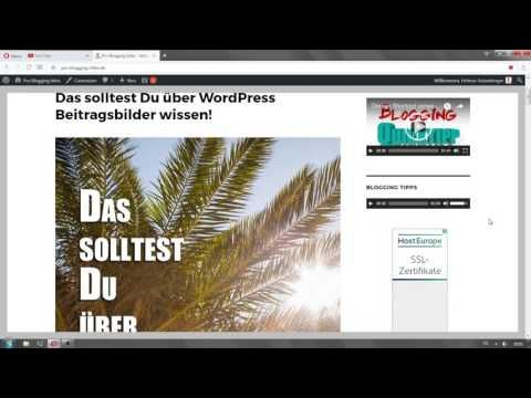 Das Wordpress Video und Audio Widget