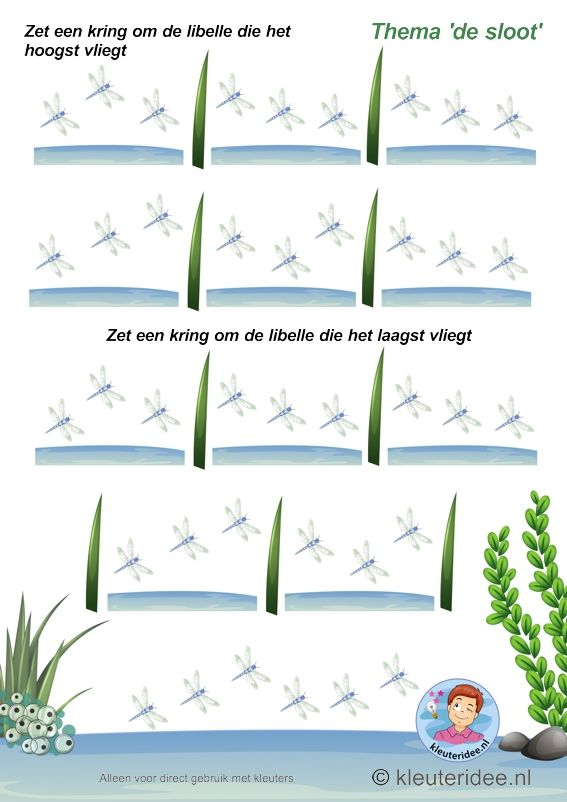 Welke libelle vliegt het hoogst-laagst , thema de sloot, kleuteridee, Which dragonfly flying the highest -lowest, free printable