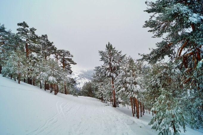 Gran nevada en la sierra de Guadarrama.