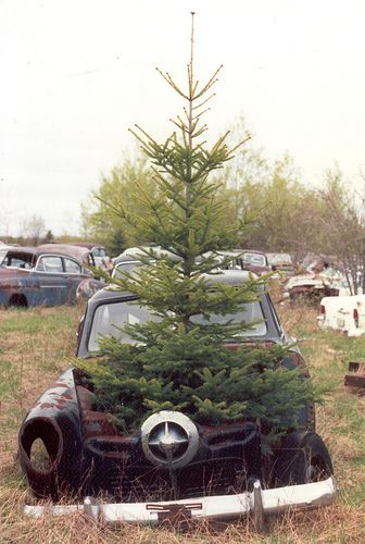 A Studebaker under a Christmas tree? | Flickr - Photo Sharing!