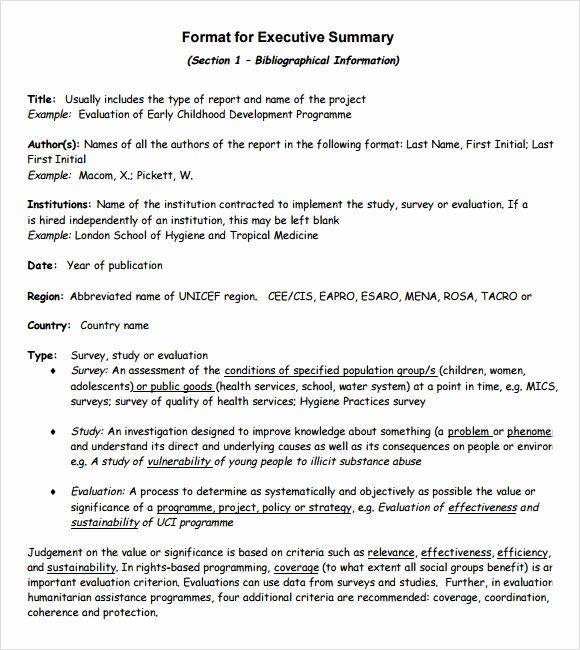 Business Summary Example Beautiful Sample Executive Summary Template 8 Documents In Pdf Executive Summary Template Resume Template Examples Executive Summary