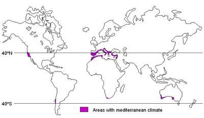 Mediterranean climate - Wikipedia, the free encyclopedia