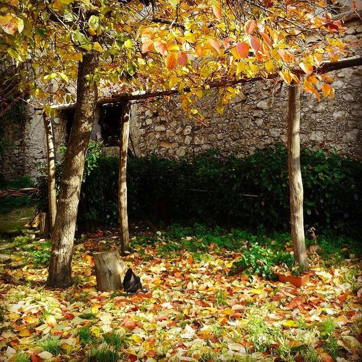 PietrAnticA  : Autumn in PietrAnticA B&B#Trentinara#Salerno#Campa...