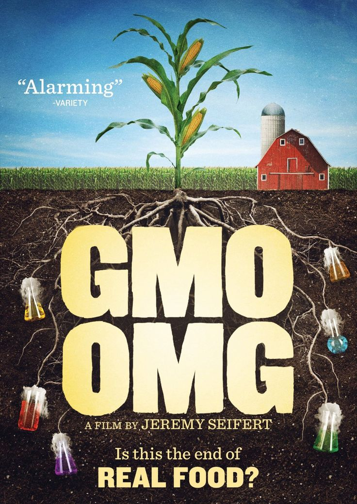 GMO OMG: Dennis Kucinich, Jeremy Seifert - GMO OMG explores the systematic corporate takeover and potential loss of humanity's most precious and ancient inheritance: seeds. Director Jeremy Seifert investigates how loss of seed diversity and corresponding laboratory assisted genetic alteration of food affects his young children, the health of our planet, and freedom of choice everywhere.