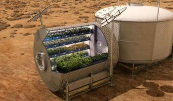 Американцы попробуют выращивать салат на аналоге марсианского грунта http://www.agroxxi.ru/zhurnal-agroxxi/novosti-nauki/amerikancy-poprobuyut-vyraschivat-salat-na-analoge-marsianskogo-grunta.html  Во Флориде заработала лаборатория, изучающая возможности выращивать растения на марсианских почвах