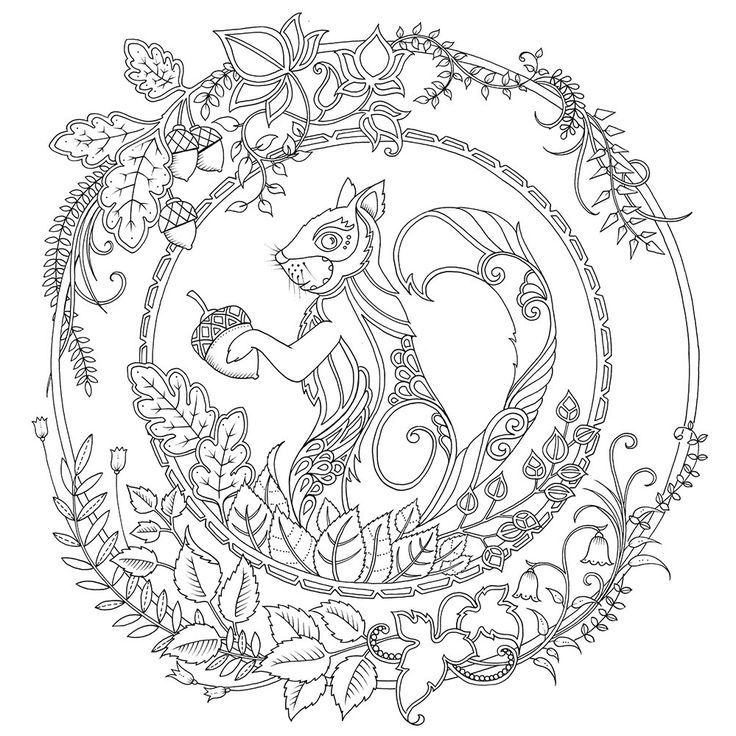 Artist Johanna Basford Enchanted Forest Coloring Pages Garden Flower Colouring Adult Detailed Advanced Printable Kleuren Voor