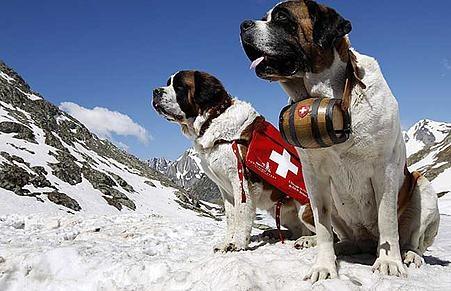 Ski in Switzerland ~ The definitive guide to Champex Lac Valais Switzerland | Ski Saint Bernard