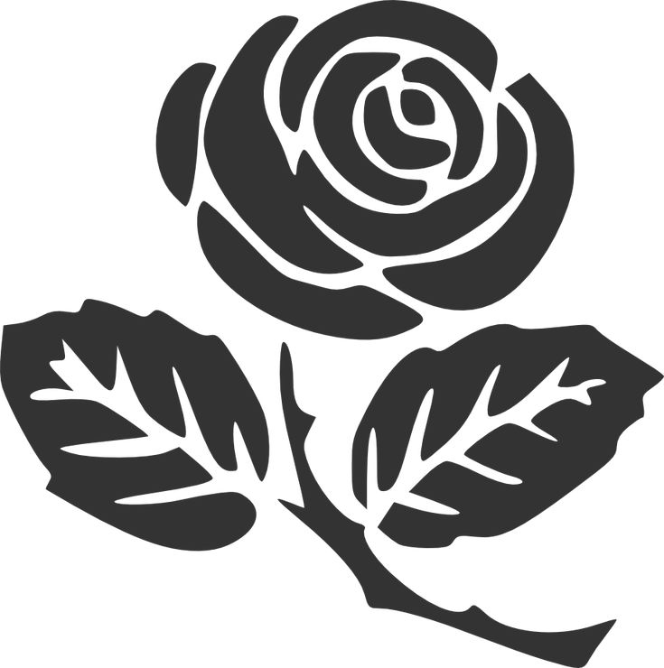 12 Best Rose Silhouette Images On Pinterest