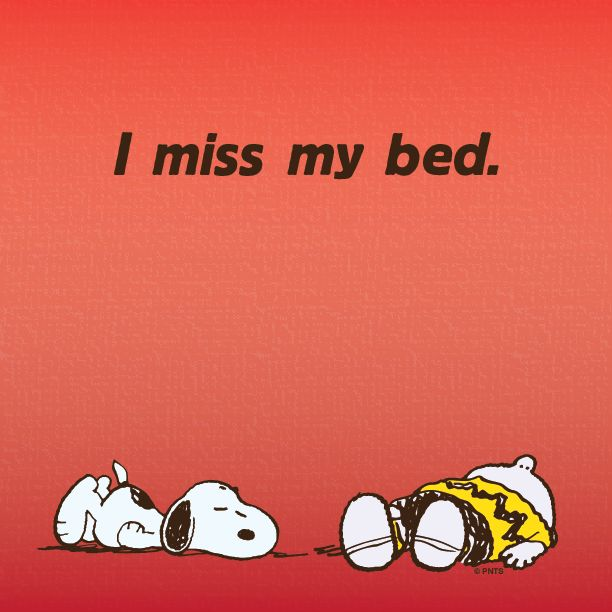I miss my bed. Charlie Brown and Snoopy.