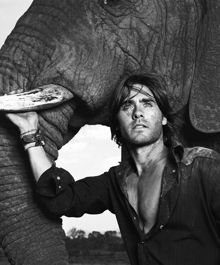 Photoshoot Jared Leto + Elephant by Warwick Saint  (vía http://jaredleto.com/thisiswhoireallyam/2013/02/01/me-the-elephant-by-warwick-saint-part-3/ )