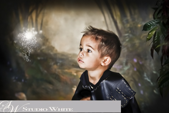 Mystical Creations by Studio White  ~Young Knight~