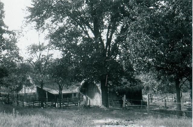 Barnyard of Laura and Almanzo Wilder's Rocky Ridge Farm -vintage photo