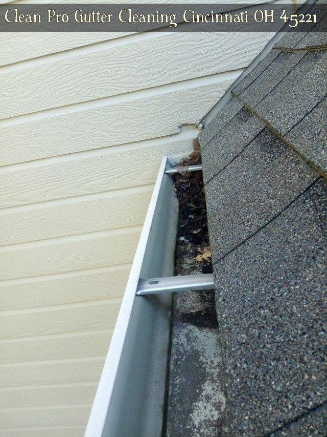 Clean Pro Gutter Cleaning Dayton Ky 41074 Cleaning Gutters