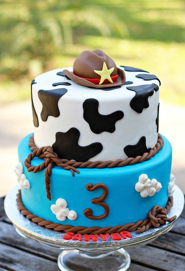 Toy Story Woody & Clouds Cake (Sawyer)