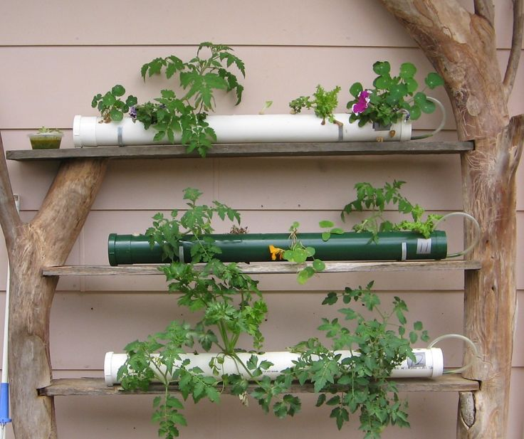 17 best images about hydroponics on pinterest indoor for Indoor gardening pdf