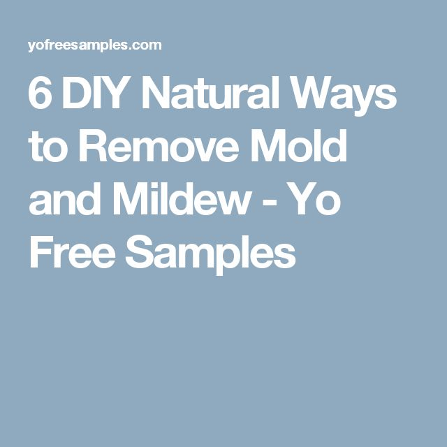 The 25 best diy mould removal ideas on pinterest mold remover 6 diy natural ways to remove mold and mildew yo free samples solutioingenieria Gallery