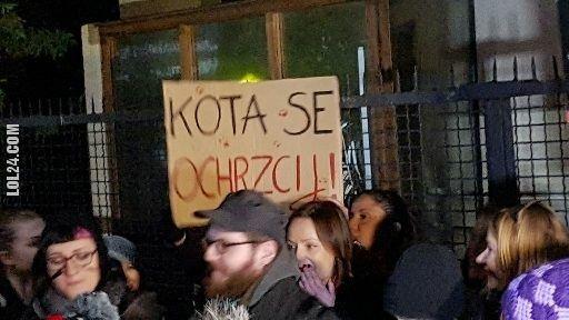 Kota se ochrzcij #kota #se #ochrzcij