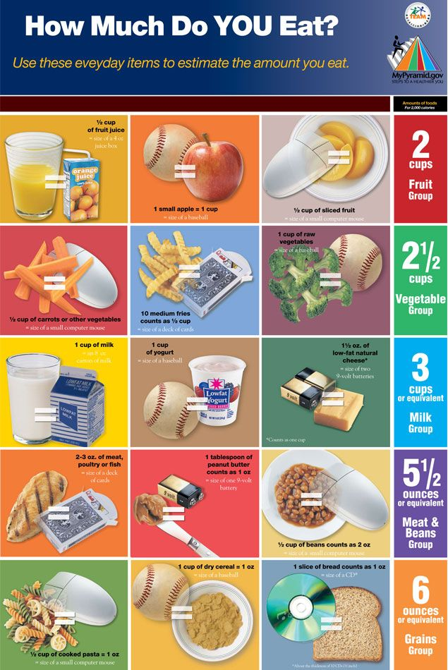australian eating guideline book with portion sizing