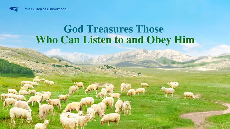 """The Hymn of Gods Word """"God Treasures Those Who Can Listen to and Obey Him""""  The church of Almighty God God doesn't care   whether one is humble or great.   As long as he listens to God, obeys what God orders and entrusts, can cooperate with His work, with His plan and His will, so that His will and plan can proceed without hindrance, such action is worthy of, worthy of God's remembrance, and worthy of receiving, receiving His blessing..."""""""