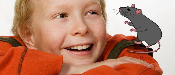 Lasten 5-osainen kierrätysseikkailu: mistä tavarat tulevat ja mihin ne menevät?