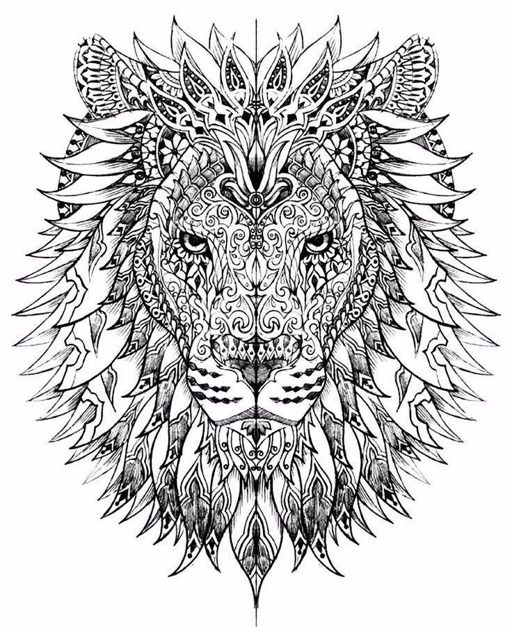 #lion #beauty