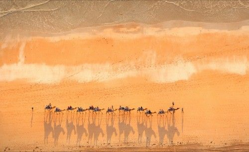 Gorgeous aerial shot of Cable Beach sunset camel train, Broome WA by Stuart Westmore