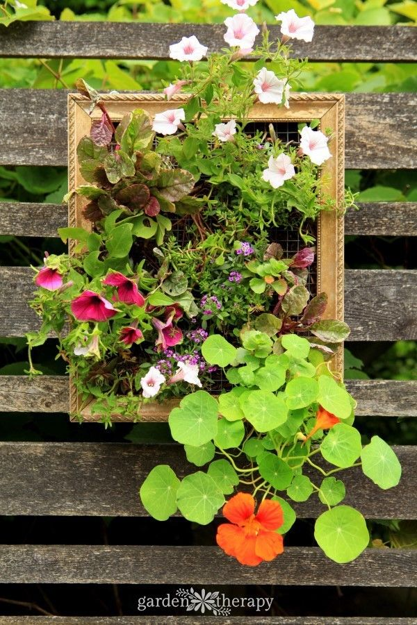 Colorful Vertical Planters with Annuals - living artwork