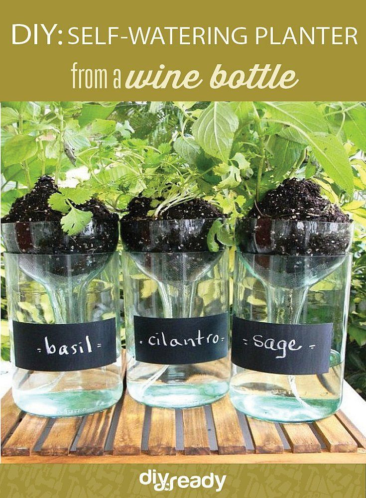 1000 Ideas About Self Watering Planter On Pinterest