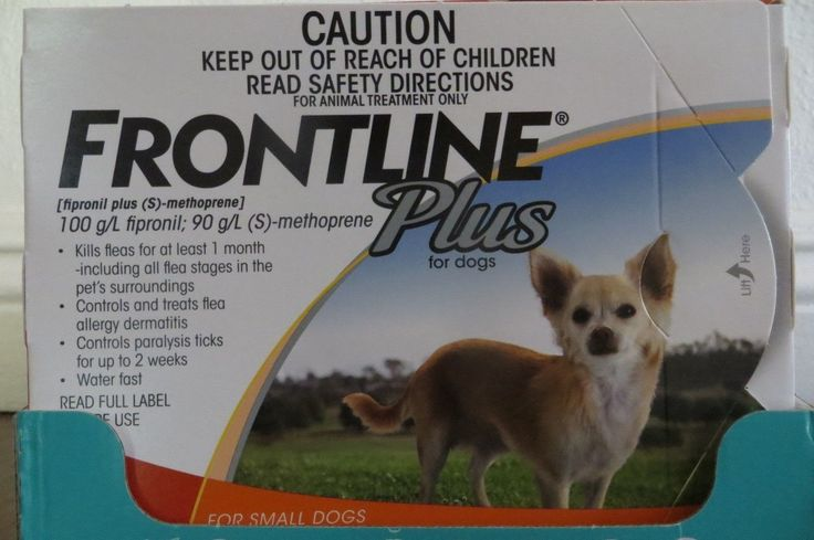 Flea and Tick Remedies 20749: Merial Frontline Plus For Dogs 0 - 22 Lbs. 6 Pack For A 6 Month Supply -> BUY IT NOW ONLY: $48.88 on eBay!