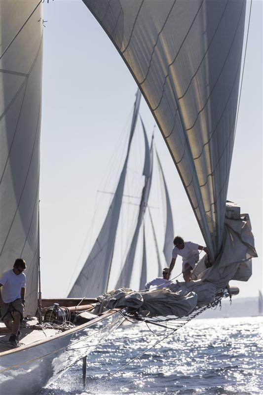 Sailing yacht Cambria - Photo: Carlo Borlenghi