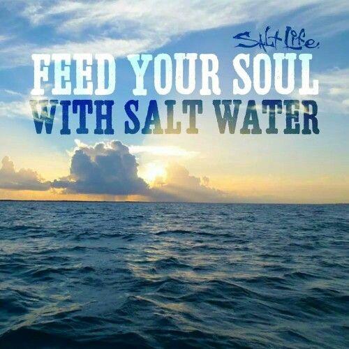 salt life quotes