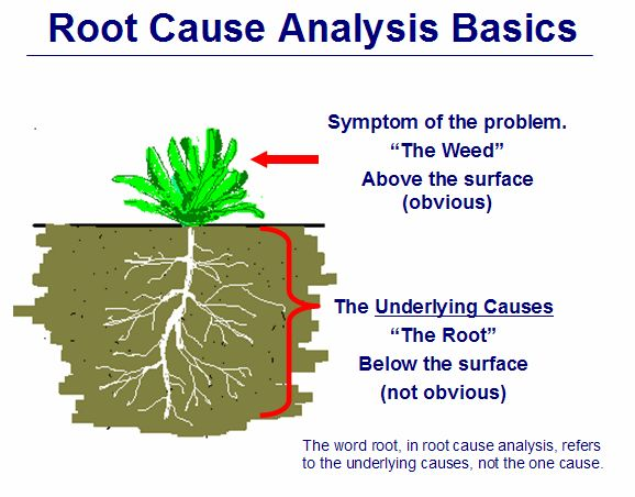 Best Root Cause Analysis Images On   Photography