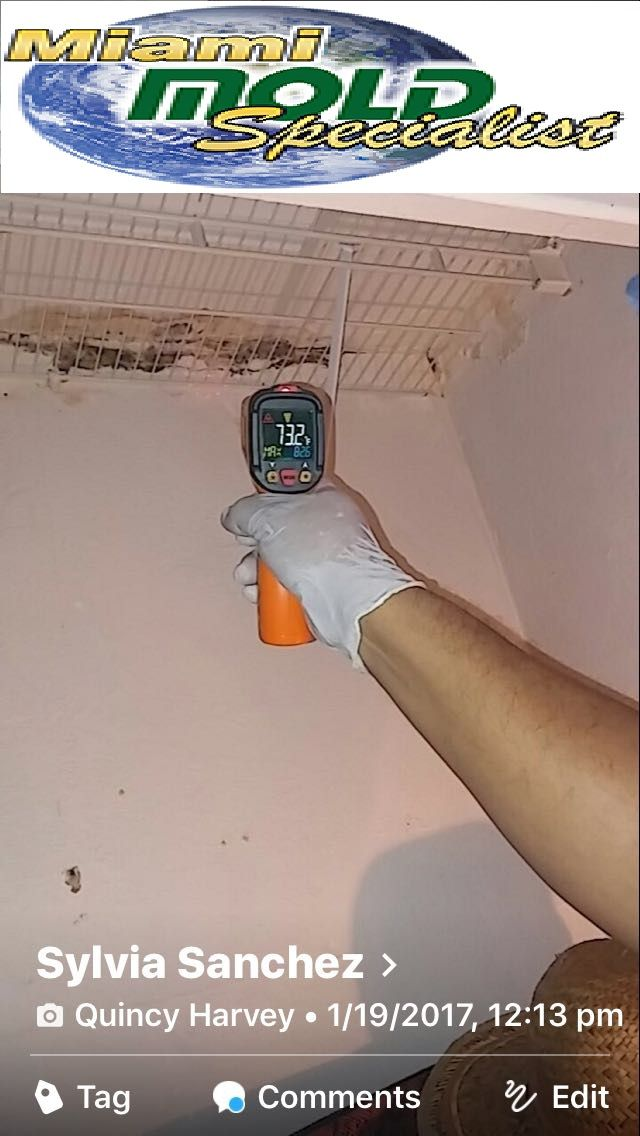 Miami Mold Specialist offers Individual Mold Inspection Services. Mold remediation can be expensive. Pre-testing can prove the presence of black mold and further toxic or non-toxic mold conditions. Allow us to find out if you really have an issue with mold. Mold treatment might not be essential. We are not associated with any Mold Treatment or Removal Companies. We guarantee that our clients will be given objective, non-bias investigation results! Call-1-305-763-8070