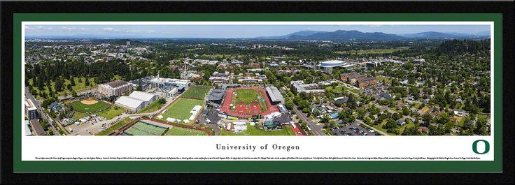 Oregon Campus during Prefontaine Classic Panoramic Poster