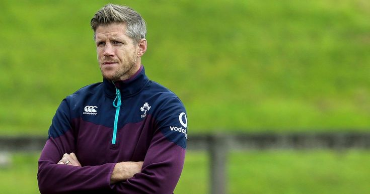 Simon Easterby says Ireland are fully grounded after All Blacks victory