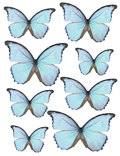 printable butterflies -  What A Beautiful Mess