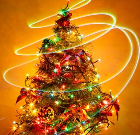 Xmas is not only about a bright and sparkly tree.