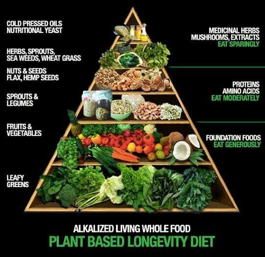longevity pyramid