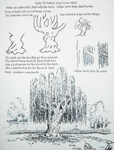 How to Draw Worksheets for The Young Artist: How to Draw a Willow Tree. Plus other how-to draw