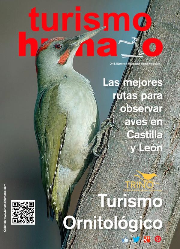 Las mejores rutas para observar aves en Castilla y León