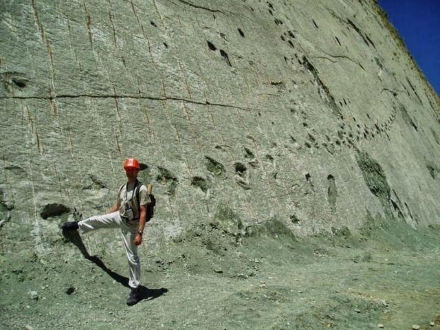 WinNetNews.com - Jejak dinosaurus tertanam di dalam bebatuan tersembunyi di Bolivia. Beberapa pekerja konstruksi menemukan jejak dinosaurus yang diperkirakan berumur lebih dari 5.000 tahun tertanam dalam batu.Pekerja menemukan jejak dinosaurus di sebuah pabrik semen di Sucre, Bolivia. Situs ini mengungkapkan