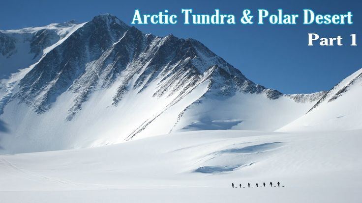 Learn - A Arctic Tundra And Polar Desert - Kids Learning Videos - Part 1