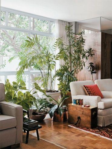 リビングのワンコーナーにさまざまな観葉植物をまとめてディスプレイ。