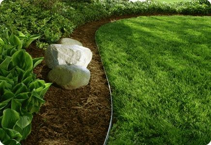 LOVE perfect edging!!!: Gardens Ideas, Edge Clean, Edge Ideas, Landscape Design, Permaloc Landscape, Diy Landscape Edge, Landscape Ideas, Bedrooms Decor Ideas, Gardens Edge